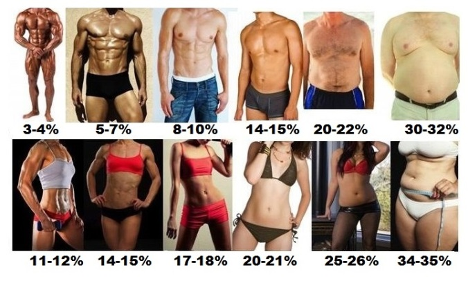 body fat percentage chart for men and women